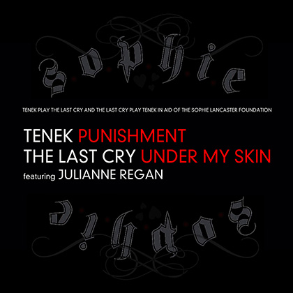 tenek vs The Last Cry - feat Julianne Regan (Sophie Lancaster EP) [2013]